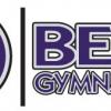 Best Gymnastics: Athletic Play or High Level Gymnastics Training