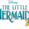 Disney's Little Mermaid Jr, The Musical