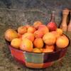 Gluten Free Apricot Crumble Recipe