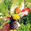 Fall Craft for Kids: Pine Cone Princess