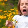 Tips on Relieving Seasonal Allergies