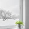 Tips on Weatherizing Windows