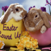 Easter Round Up: Crafts, Bunnies, Egg Decorating, Easter Basket Ideas