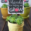 7 Teacher Appreciation Gift Ideas