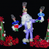 DCT's Nutcracker: an Imaginative Interpretation