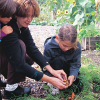Gardening With Kids: Growing Memories