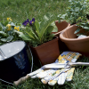 7 Tips on Where to Buy Gardening Supplies for Less