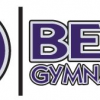 Best Gymnastics: Athletic Play or High Level Gymnastics Training