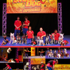 The Stunt Dog Experience!