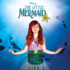 Disney's The Little Mermaid Jr.