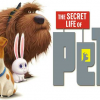 Free Movie Night: The Secret Life of Pets