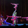 Cirque du Soleil's Varekai Takes Final Bow in Frisco