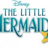 Disney's Little Mermaid Jr, The Musical