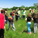 Native Plants and Prairies Day May 3rd, Free Family Event