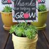 7 Teacher Appreciation Gift Ideas
