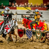 Medieval Times: Free Admission for Kids and a Ticket Giveaway