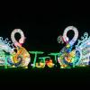 Holiday Wonder Brings Sparkle to Fair Park this Season