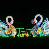 Holiday Wonder Brings Sparkle to Fair Park this Season