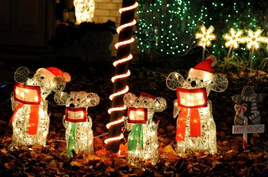 Holiday Events & Light Displays (Interlochen) DFW