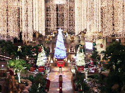 Lone Star Christmas - Gaylord Texan