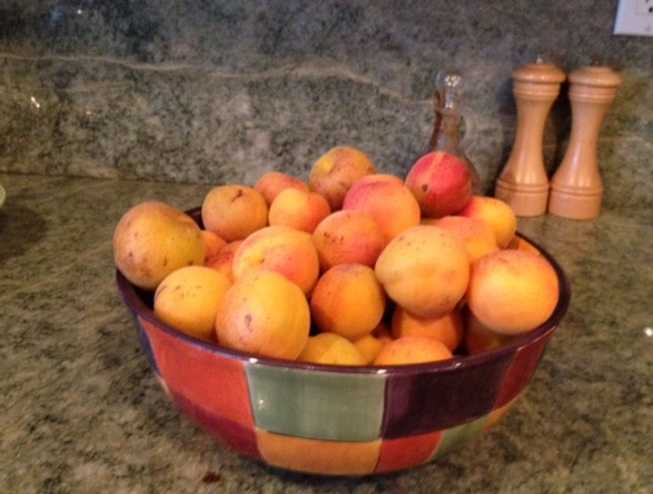 Fresh, ripe apricots