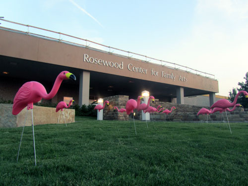 Pinkalicious the Musical - Dallas Children's Theater - Flamingoes