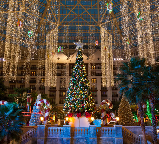 Gaylord Texan Christmas Tree