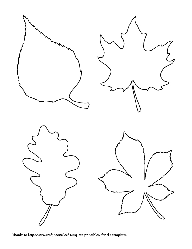 free fall leaf template