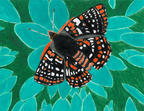 Endangered Species Day - Youth Art Contest