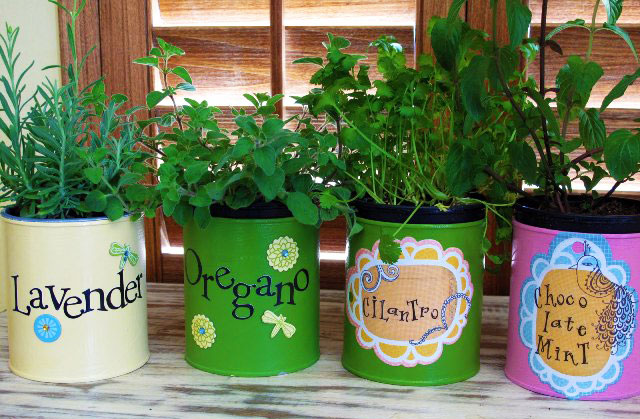 Easy Kids Crafts : Tin Can Herb Garden