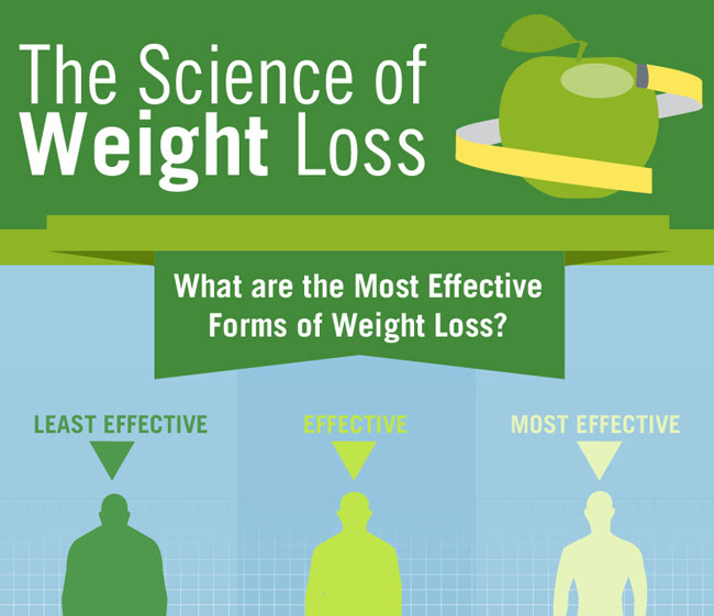 Infographic Effective Weightloss