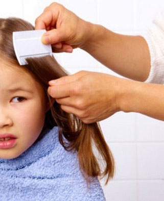Combing out head lice