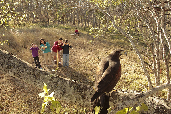 Go Birding with the Family at a Texas State Park