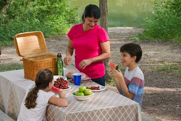 Ways to Picnic Safely at Texas State Parks