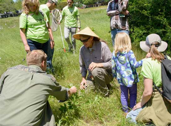 Native Plants & Prarie Day - Free Family Fun - North Texas Kids Magazine