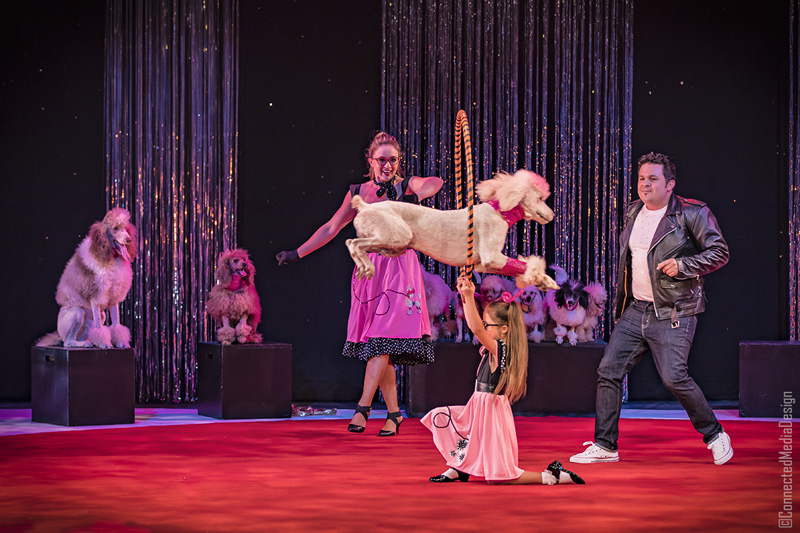 The Pompeyo Family Rescue Dogs - La Fete - Lone Star Circus - Dallas Children's Theater - North Texas Kids Magazine (CMD)