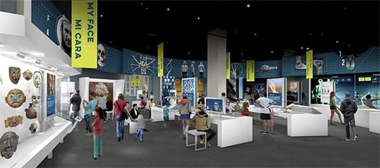 Perot Museum - Being Human Hall Re-Imagined - North Texas Kids