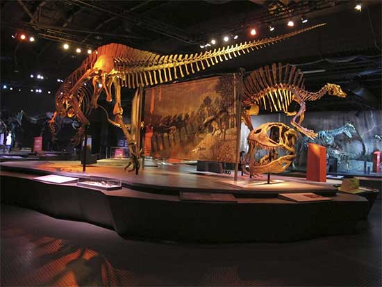 Ultimate Dinosaurs - Perot Museum - North Texas Kids