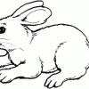 Bunnies are Everywhere! Must be time for a coloring contest.