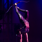 Let Lone Star Circus Illuminate Your Imagination – Win 4 Tickets to Opening Night!
