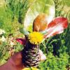 Fall Craft for Kids: Pine Cone Princess