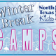 2013 Winter Break Camps & Kids Activities in DFW