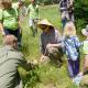 3rd Annual Native Plants & Prairies Day