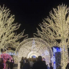 Holiday Fun at Enchant Christmas, World's Largest Light Maze and Market
