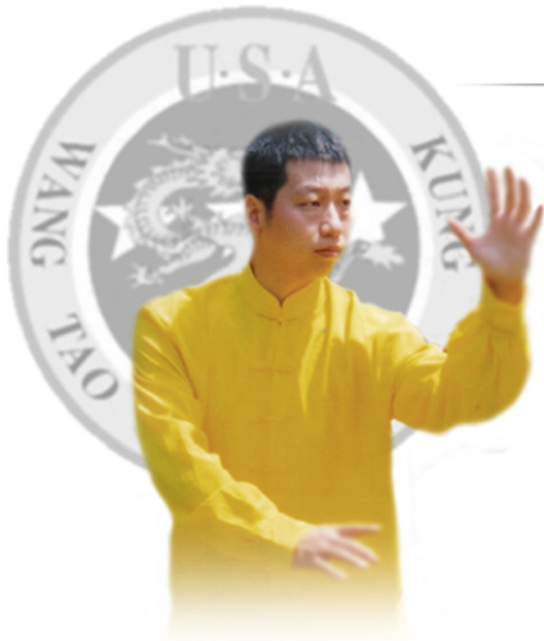 Chinese immersion and kung fu classes
